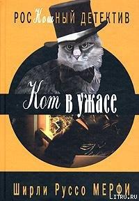Кот в ужасе