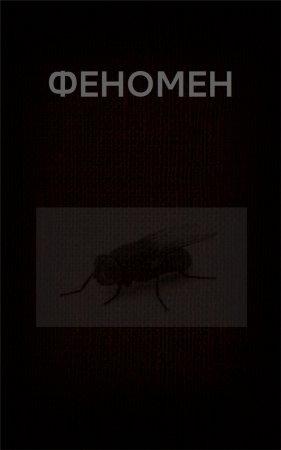 —качать книгу ФЕНОМЕН