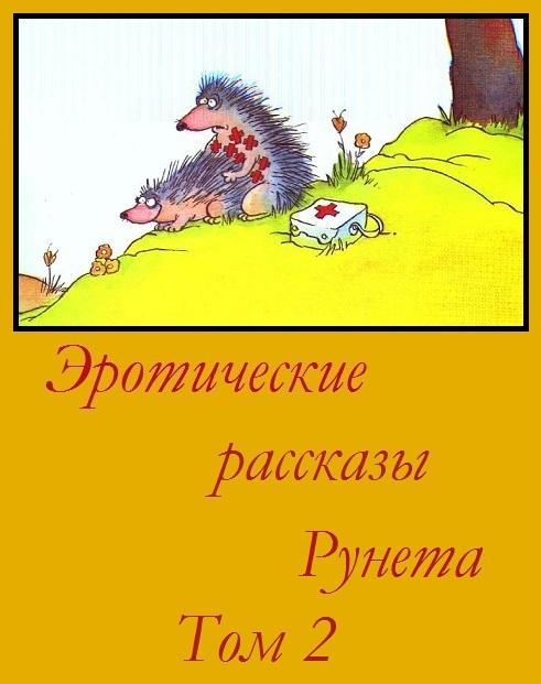 —качать книгу Эротические рассказы Рунета - Том 2